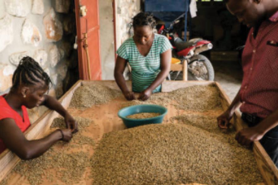 Haitian Agriculture